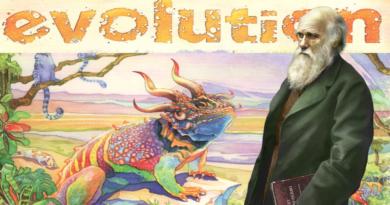 evolution board meniac