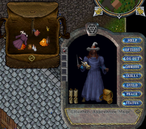 Ultima Online character