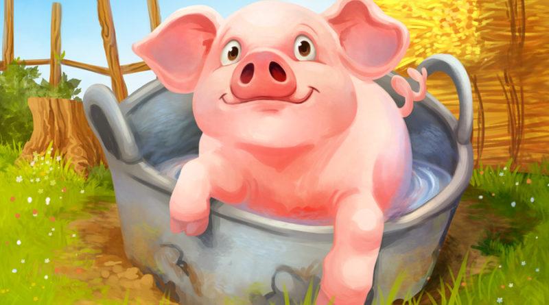 farmini pig card