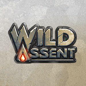 wild assent highlight meniac