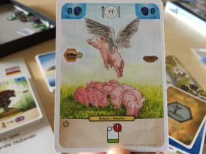darwinning boardgames meniac