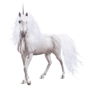 Eternity the last unicorn meniac