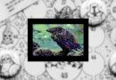 the Nightland C64 meniac recensione